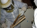 9-Honey Comb